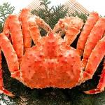 タラバガニは「○○蟹」!~カニの名前の由来~