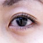 カニの目は何個ある?